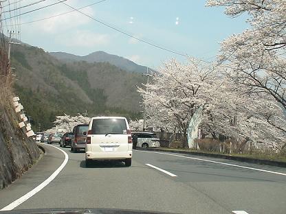Haru0408_003