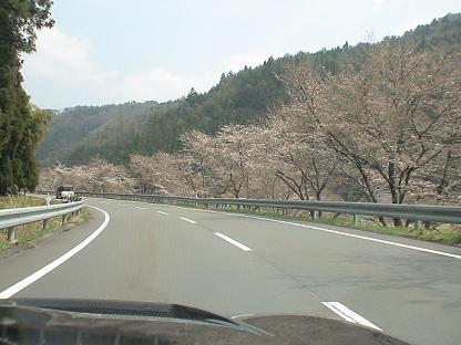 Haru0408_007